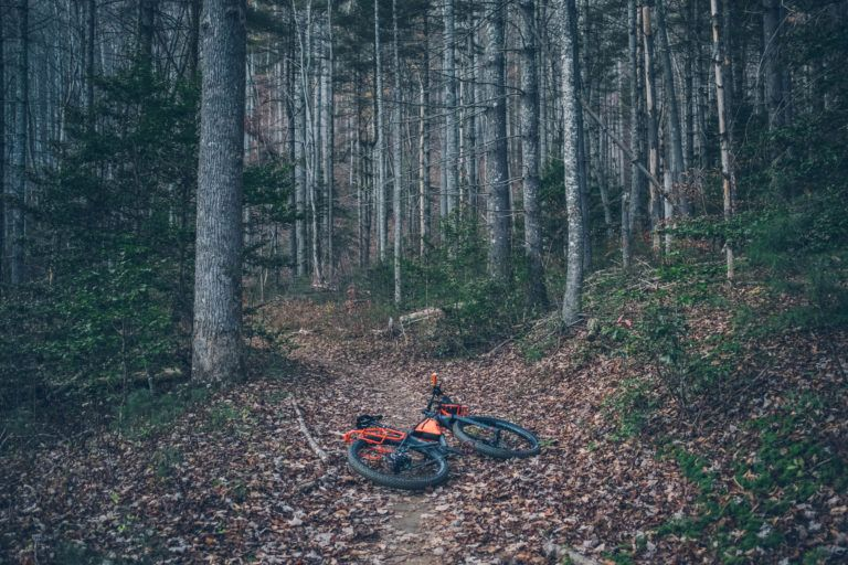 Trek 1120 Review Bikepacking, Trek, Touring bike