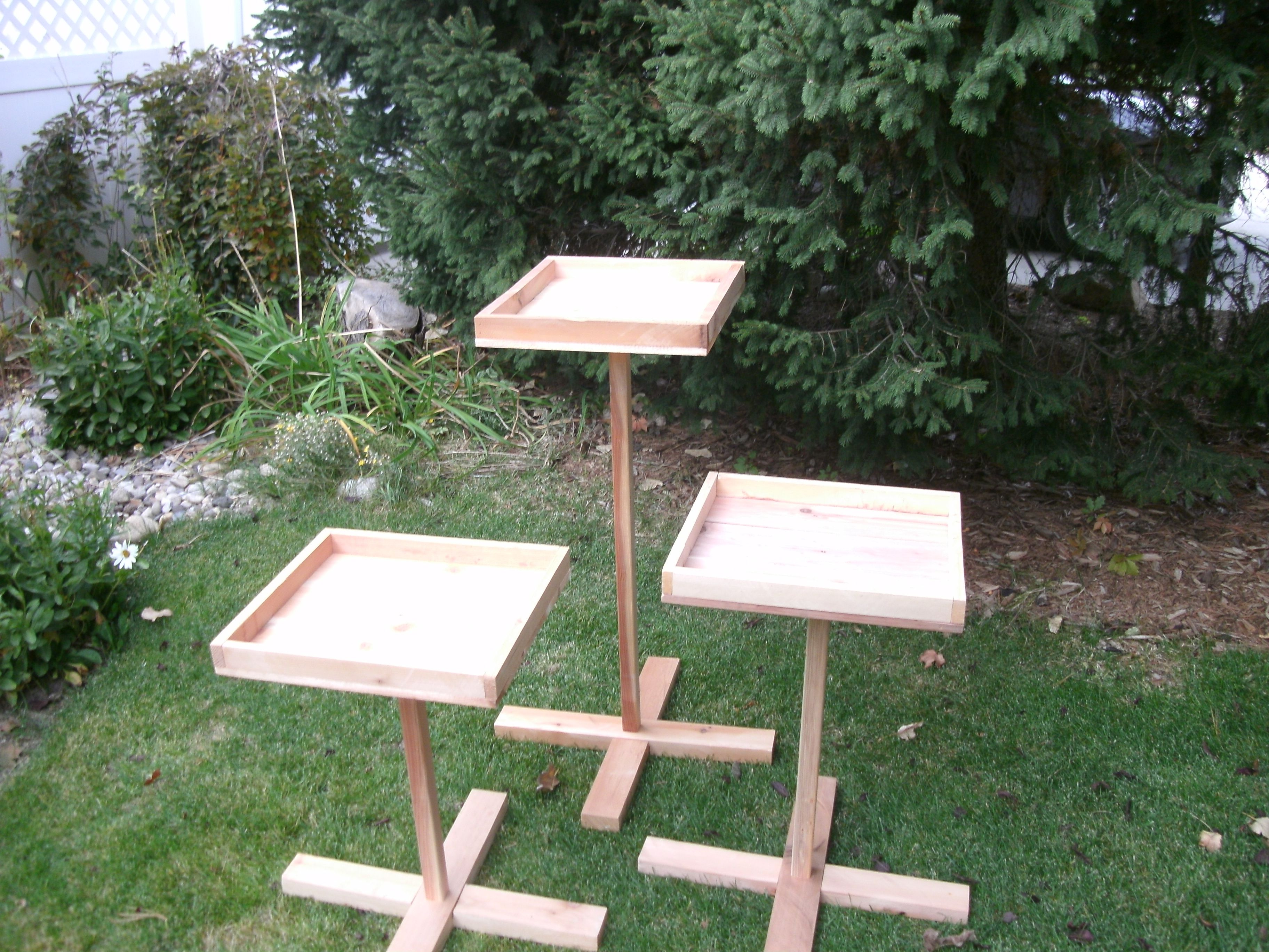 of for easy squirrel feeding unique station cardinals feeder tips a our proof love bird what diy beautiful