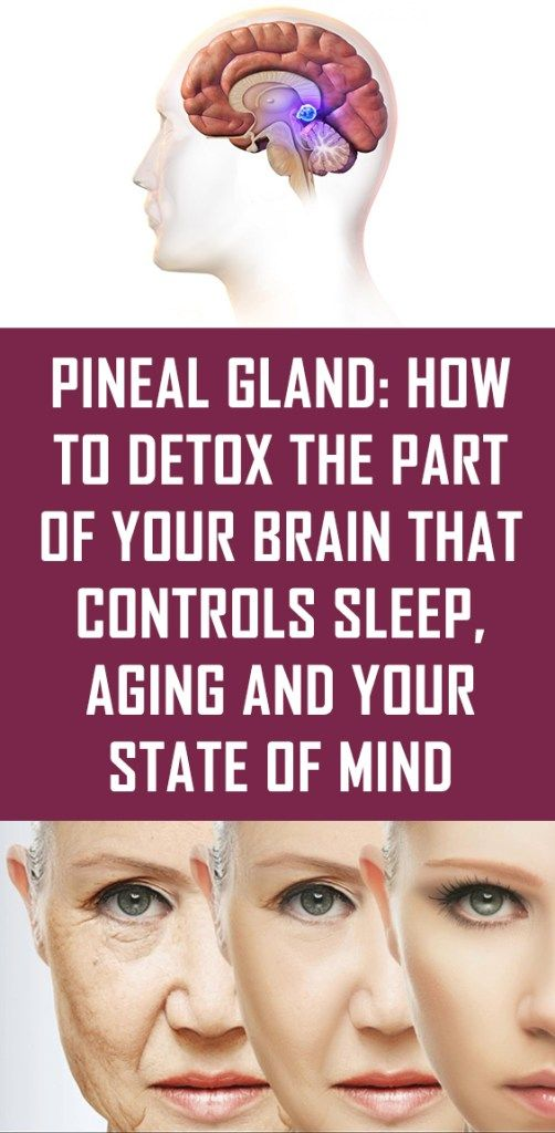 Pineal Gland: How To Detox The Part of Your Brain That ...