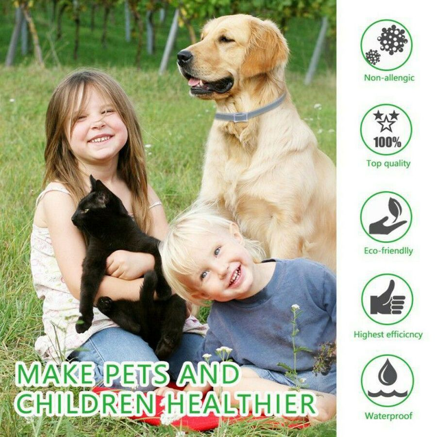 Dewel Pro Guard Flea And Tick Collar For Dogs Free Shipping And Fast Ad Flea Tick Guard Pet Collars Fleas Pets