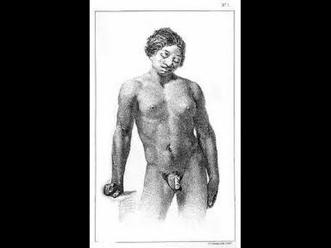 hemaphrodites sex human