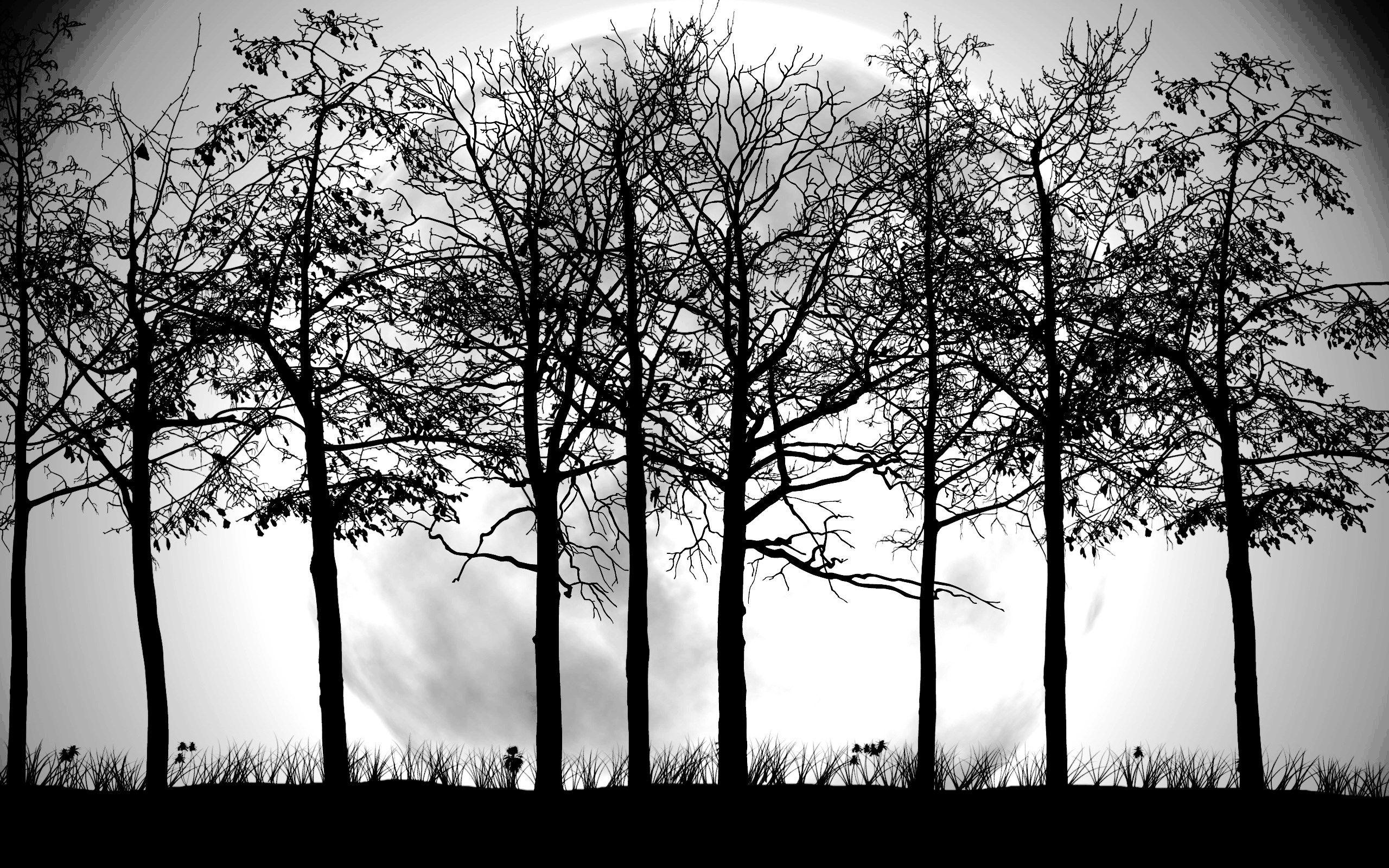 Tree Black And White Wallpaper Hd Ks6 Tree Silhouette Wallpaper Black And White Tree Tree Wallpaper Black And White