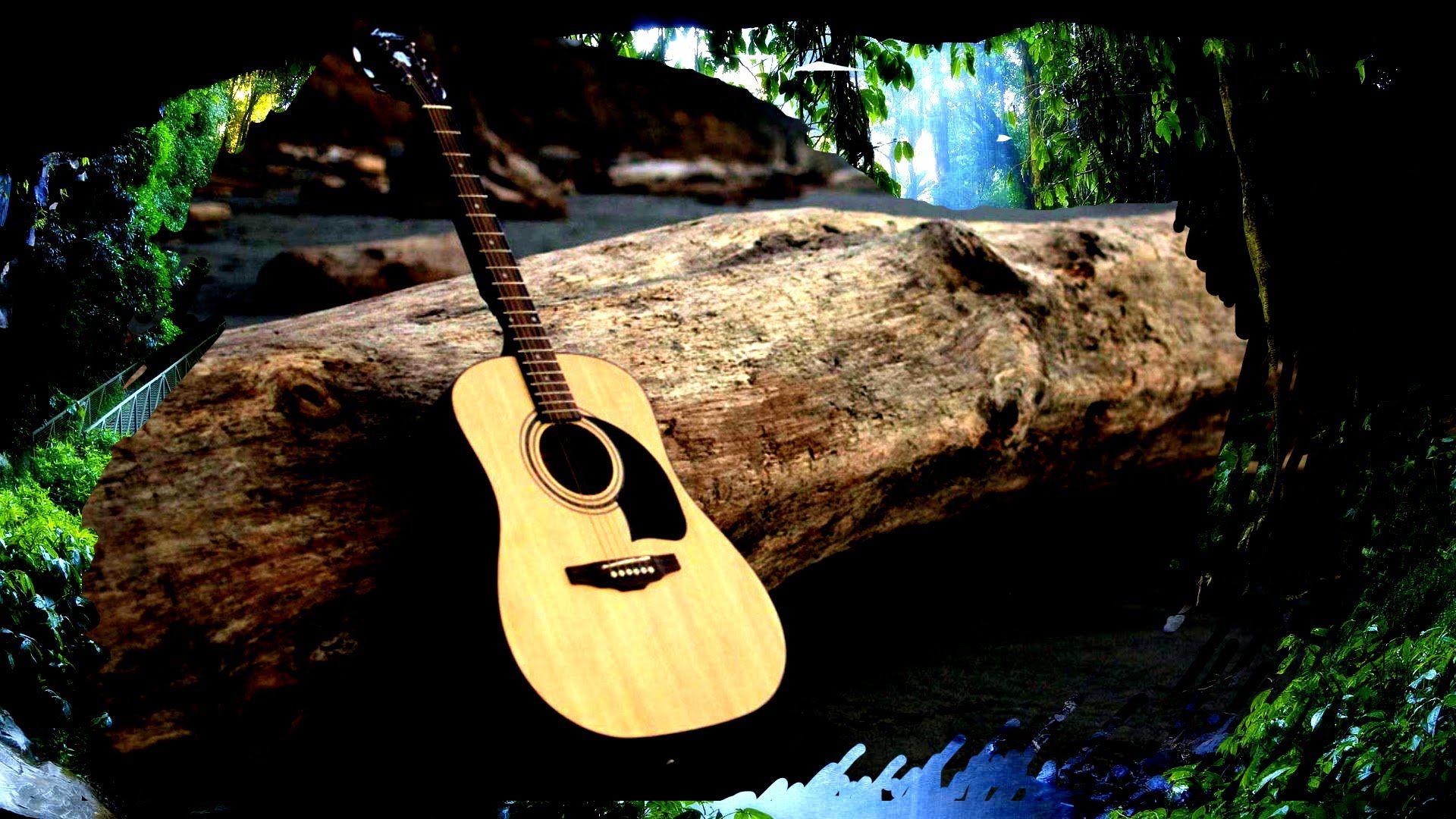 Relaxing Acoustic Guitar Music 2 Hours Rainforest Sounds Meditation Sound Meditation Acoustic Guitar Music Sleep Studies