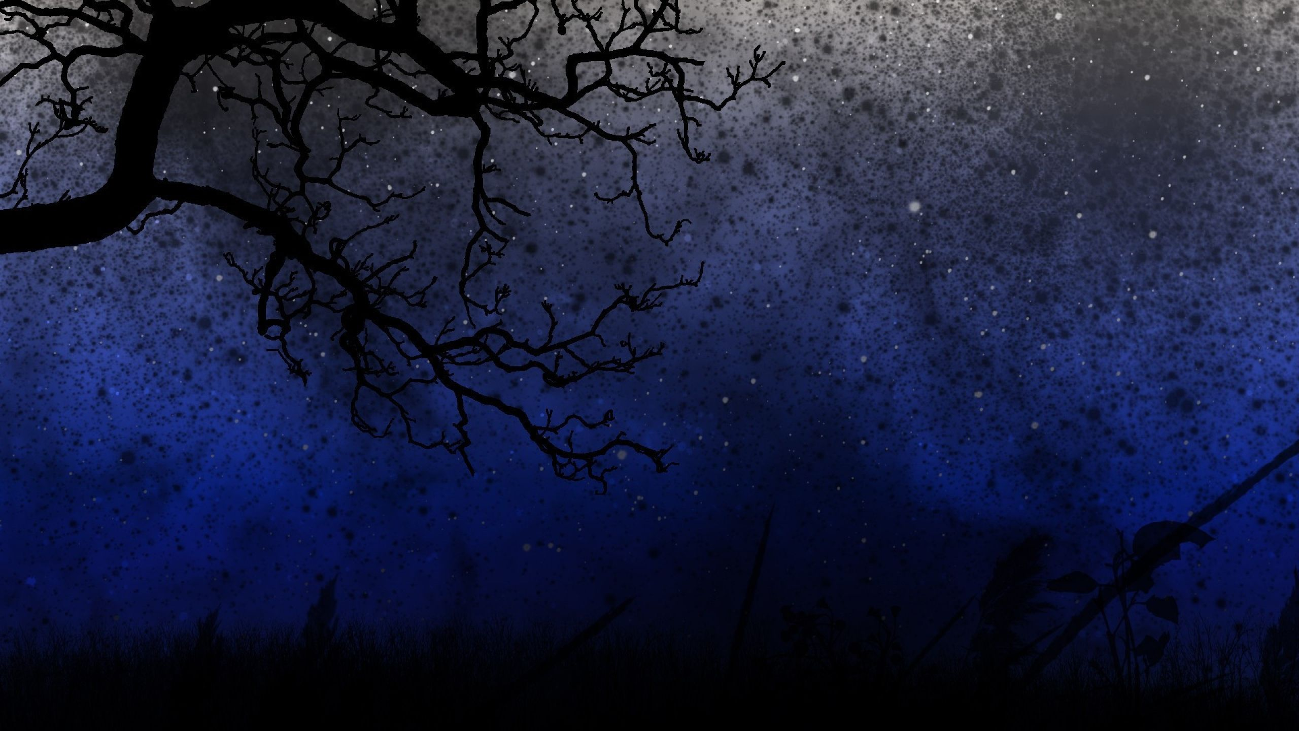 2560x1440 Wallpaper Sky Trees Night Wallpaper Tree Art