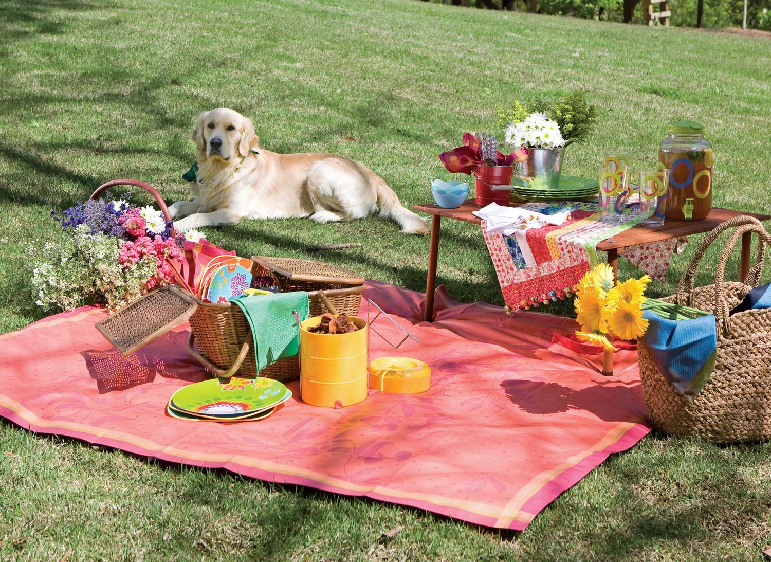 creative ideas for packing the perfect backyard summer picnic