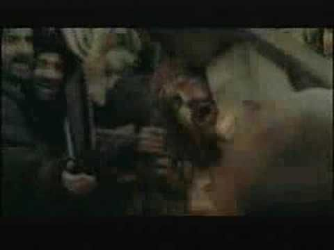119 Best Passion Of The Christ Movie Images Faith Crucifixion