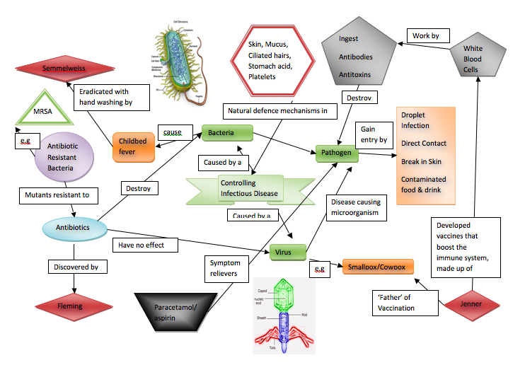 Microbiology Concept Map.Useful Infectious Diseases Concept Map Stuff Pinterest Gcse