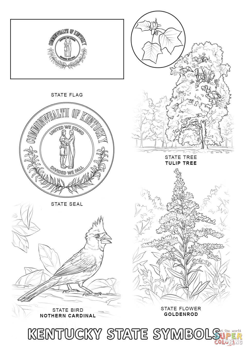kentucky coloring pages printables | Kentucky State Symbols Coloring ...