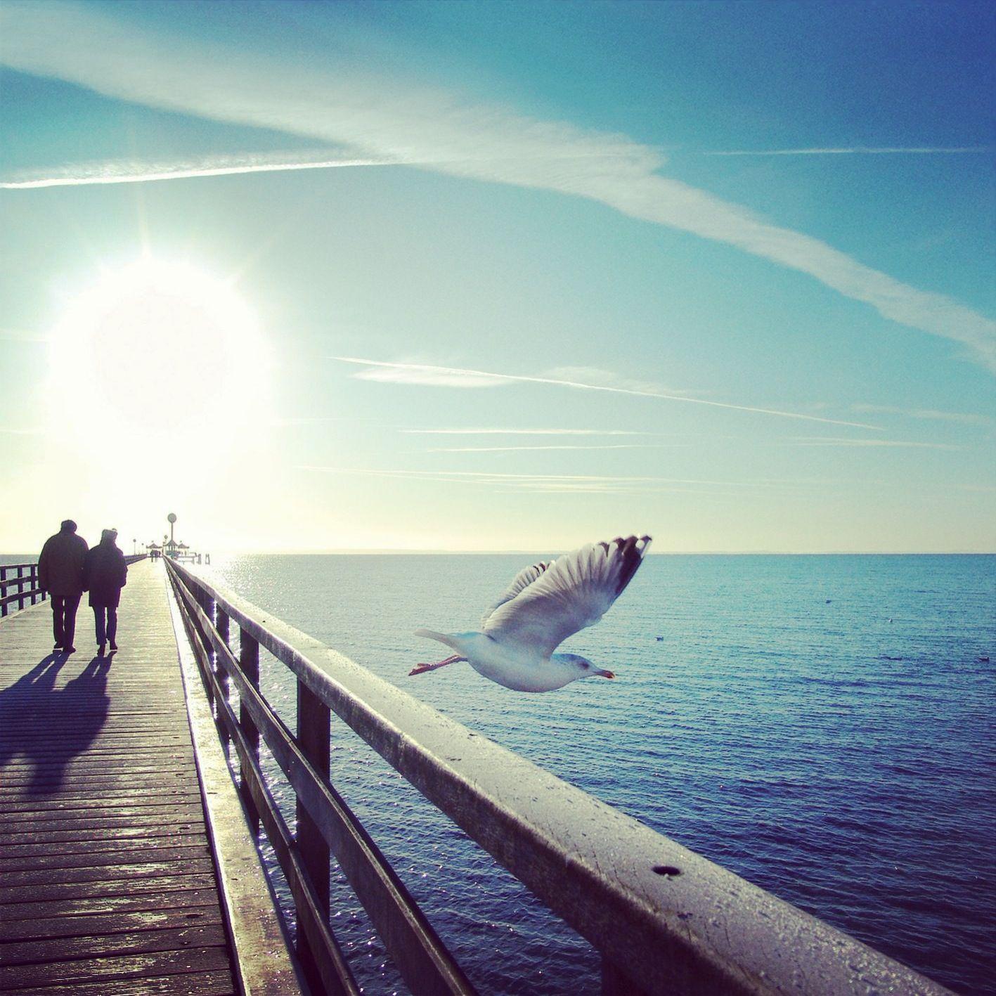 Auf geht´s in die Ferne. Ostsee urlaub, Ferien ostsee