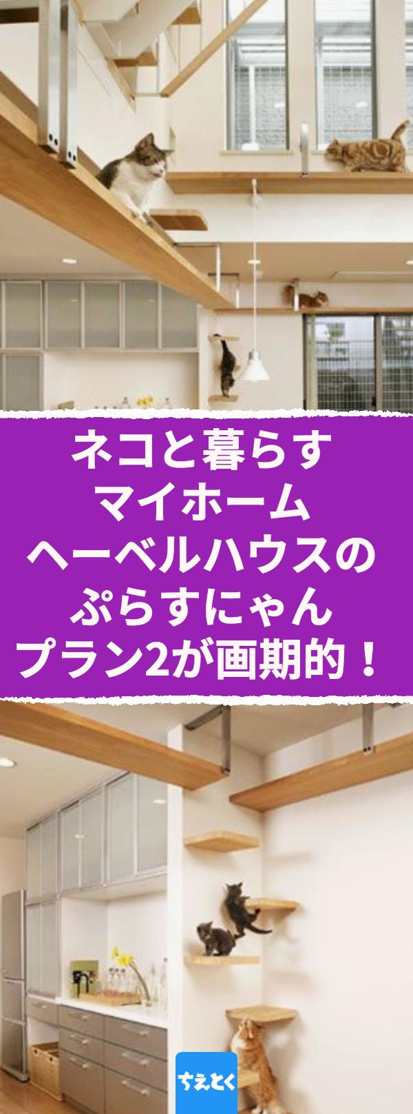 ネコと暮らすマイホーム ヘーベルハウスの ぷらすにゃんプラン2 が画期的 ネコ ヘーベルハウス ぷらすにゃんプラン2 デザイン 建築 ペット 画期的 暮らす 家を建てる 家 リノベーション インテリア