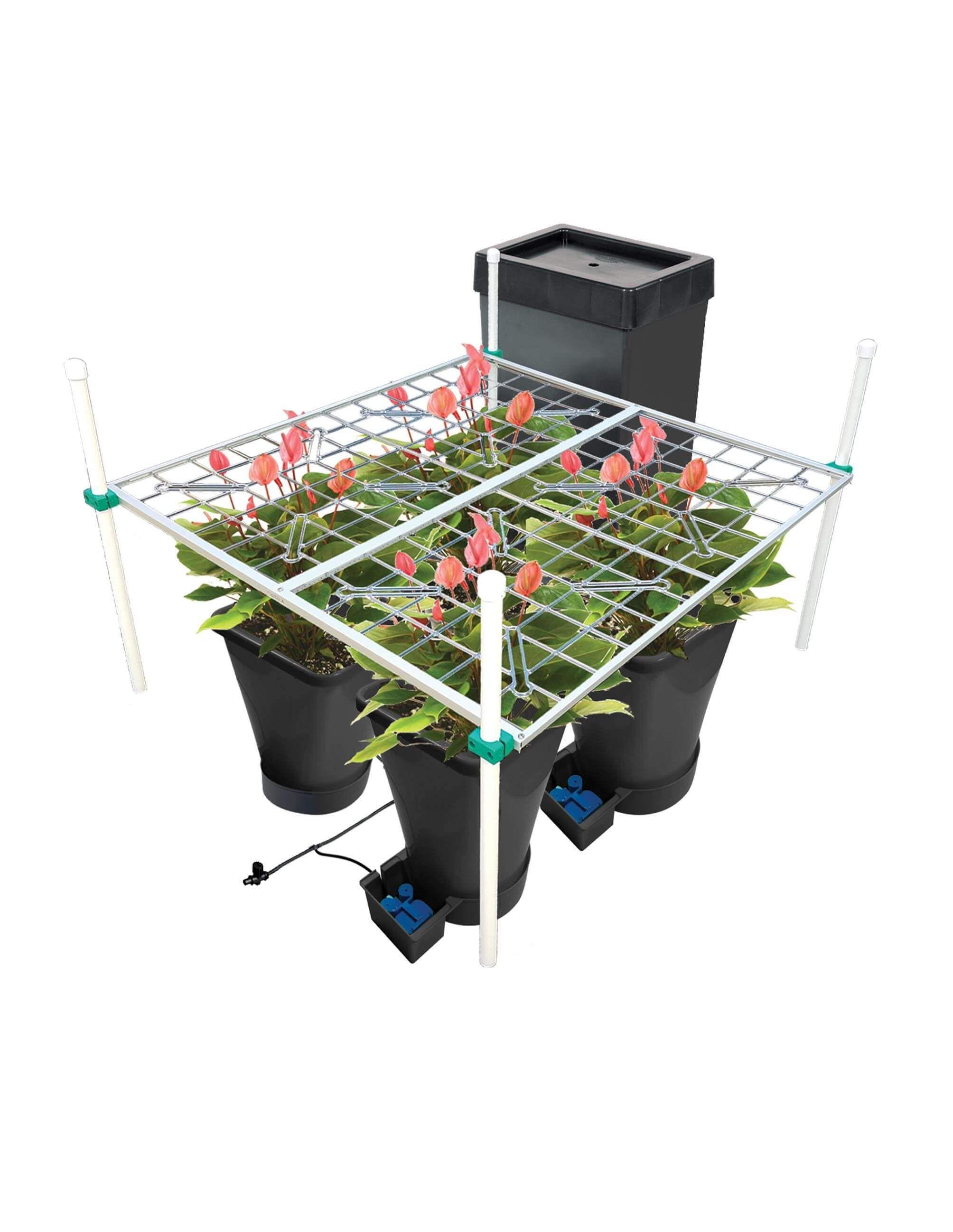AutoPot 4 Pot with P SCROG 4x4 | Marijuana | Indoor grow