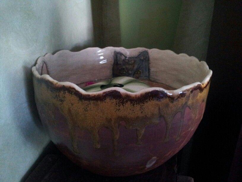 Cat peeking out bowl