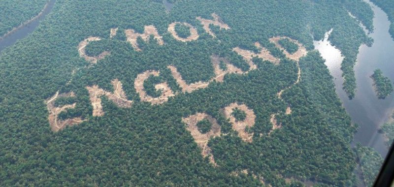 The truth about Paddy Power's stunt in the Amazon rainforest : Paddy Power Blog — Latest odds and news from the Premier League to Cheltenham