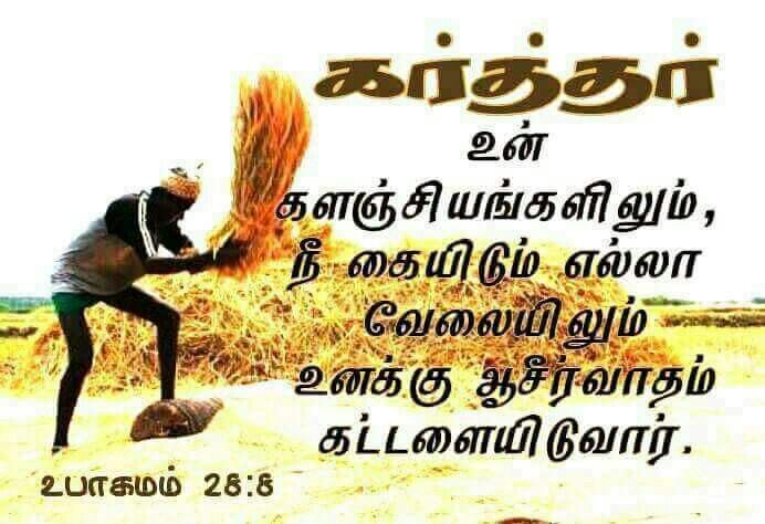 Pin by jamila rani on tamil bible verse pinterest tamil bible friendship quotes bible quotes bible verses tamil bible beautiful scripture verses friend quotes bible scriptures biblical quotes thecheapjerseys Choice Image