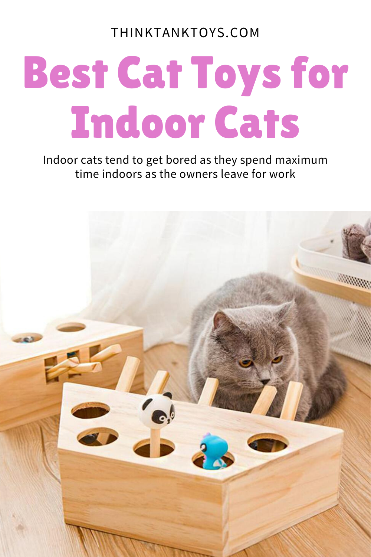 Best Cat Toys For Indoor Cats In 2020 Indoor Cat Cool Cats Cat Toys