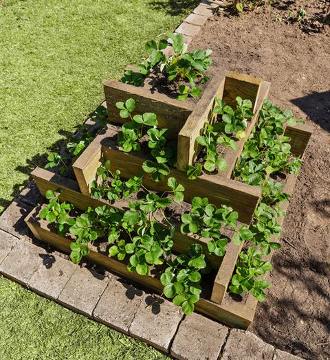 Garden Ideas Better Homes And Gardens how to make a tiered box planter - better homes and gardens