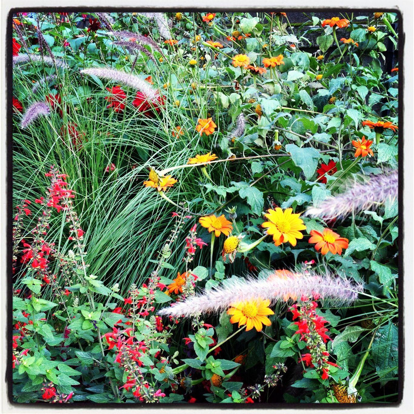 Pinterest Fall Garden Ideas Photograph Fall Flower Bed N