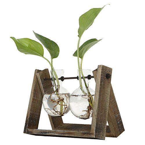 Clear Glass Planter Bulb Vases with Rustic Wood /& Metal Swivel Holder Stand