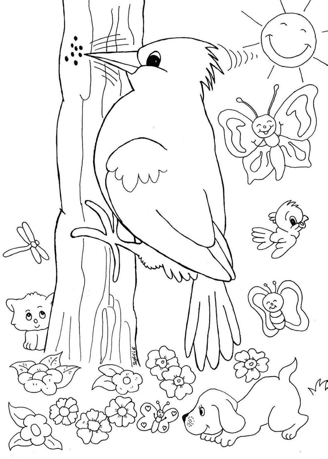 Desenhos Colorir Passaros 8 Passaro Desenho Cores Disney