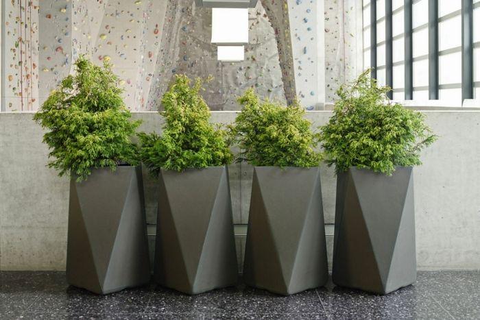 macetas grandes cuatro macetas altas modernas color gris para decoracin de interiores con planta siempreviva verde - Macetas Grandes