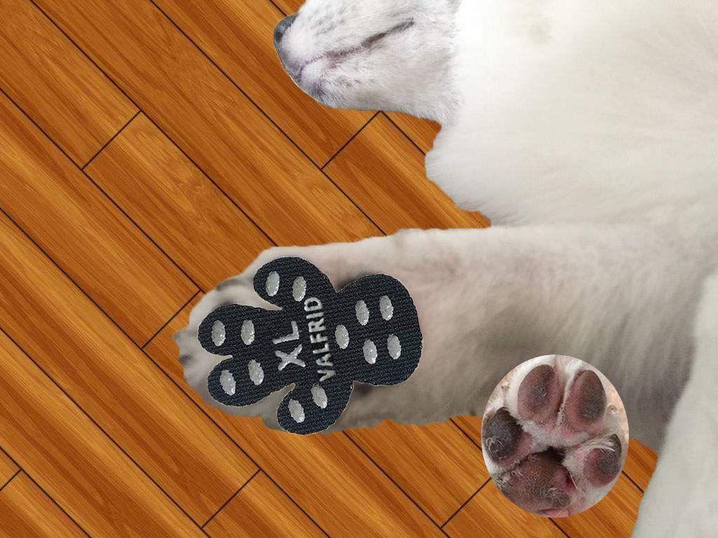 Pin On Dog Paw Protectors