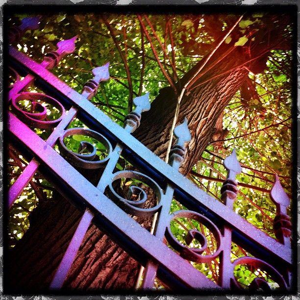 """@lilienlux's photo: """"Nelle prigioni della mente celiamo luoghi incantati e meravigliosi. Solo abbattendo i nostri limiti interiori alzeremo il velo dando vera libertà al nostro spirito✨"""""""
