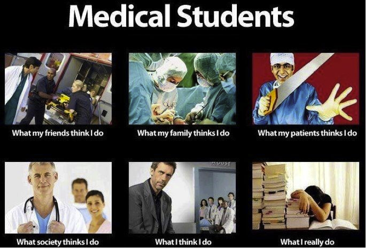 All The Truth About Medical Students By The Way You Can Check Out This Reliable Custom Writing Service Http Medical Jokes Medical Student Humor Medical Humor