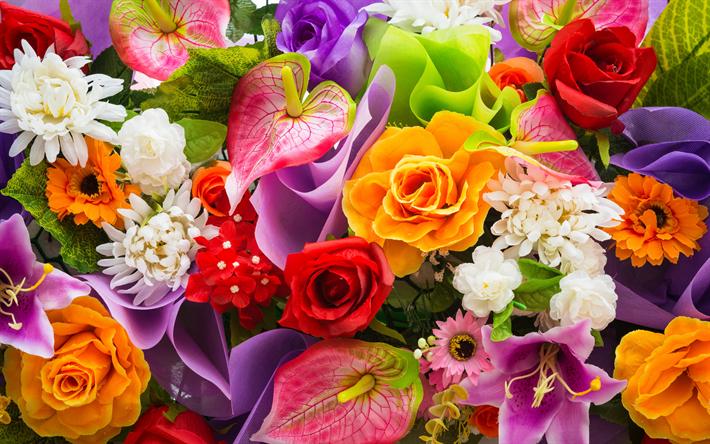Fondos De Pantalla Flores Rosadas Crisantemo Fondo: Descargar Fondos De Pantalla Los Lirios, Crisantemos