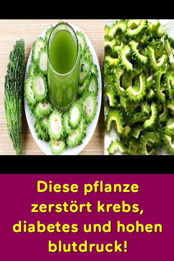 Diese Pflanze zerstört Krebs, Diabetes und hohen Blutdruck..