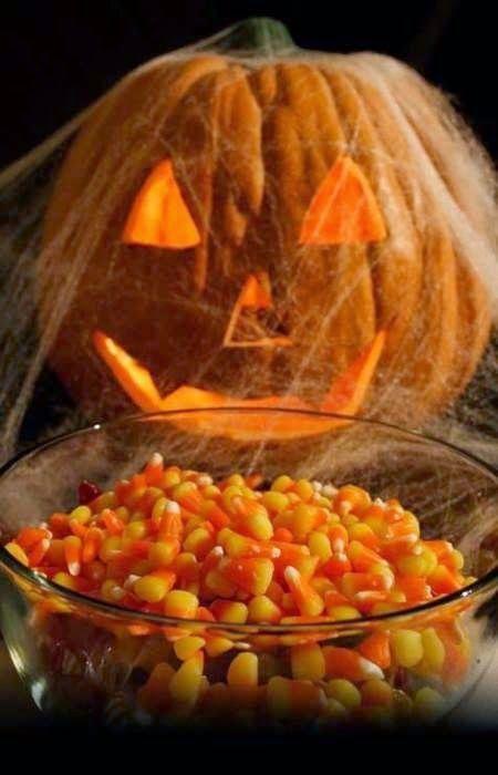 Pumpkin With Cob Webs