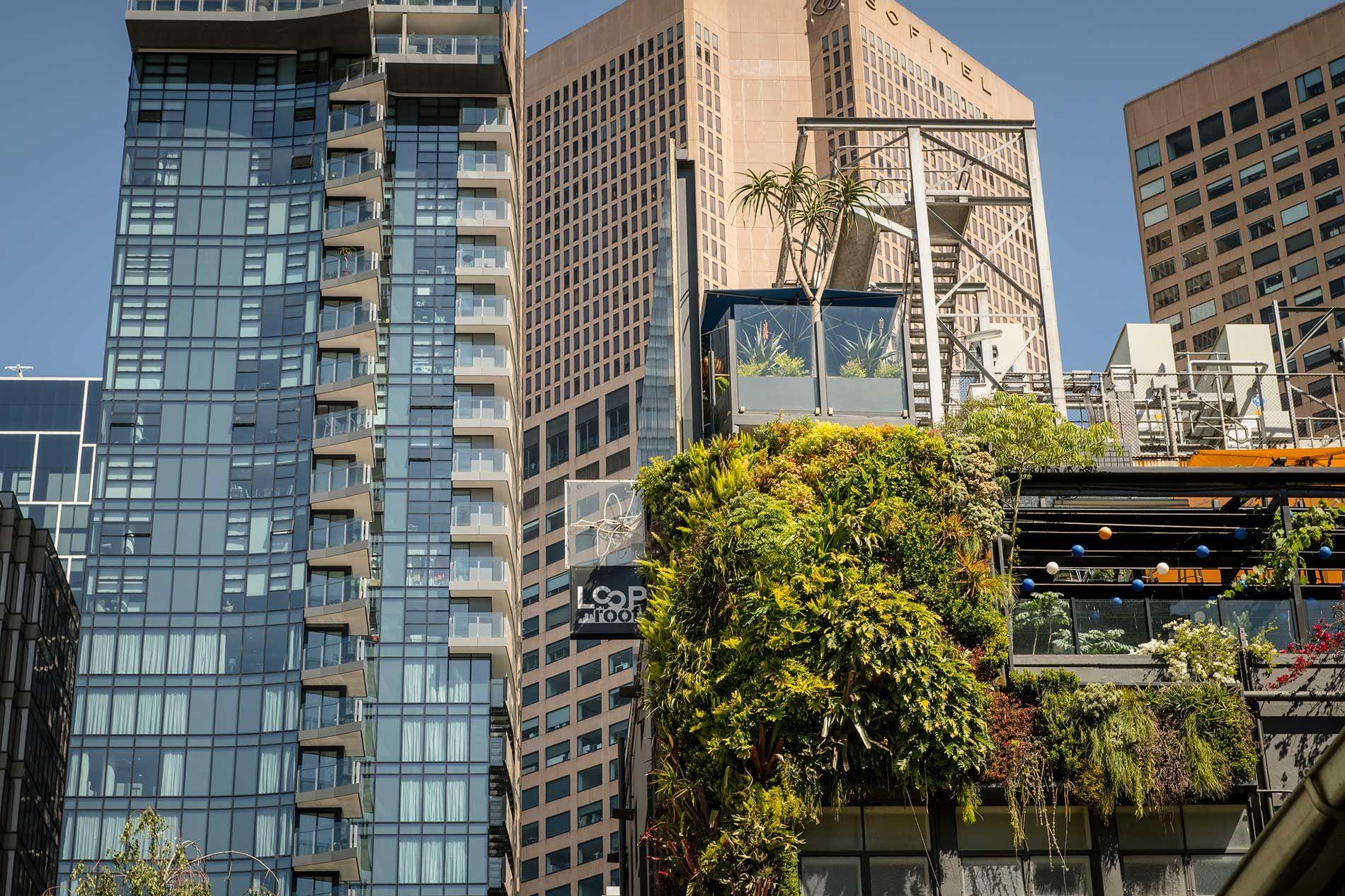 Loop Roof Loop Top Rooftop Cocktail Bar Garden Oasis Loop Roof Loop Top Rooftop Cocktail In 2020 | Garden Design Magazine, Garden Oasis, Zen Garden Design