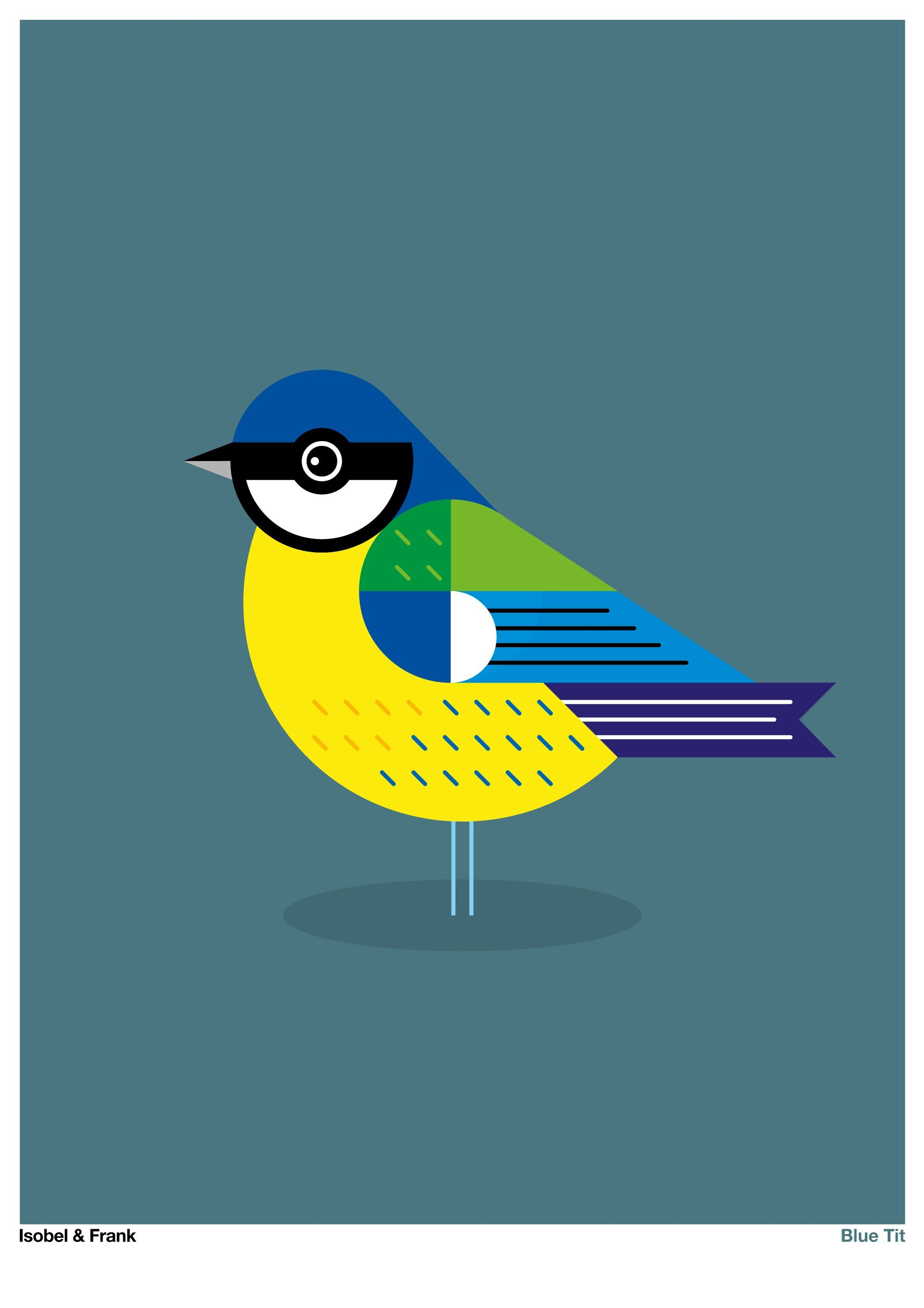 B is for Blue TitHi there, I'm a Blue Tit and no doubt you've seen me in your garden, or perhaps in woodland or farmland. I'm a rather colourful and curious character and I love to explore while looking for food. I like to think I'm an adventurorus eater...I'm rather fond of insects, caterpillars, seeds and nuts. So if you have a bird feeder in your garden, no doubt I'll visit you very soon! PrintAll our prints are produced on professional giclée printers, which reproduce extraordinary detail an