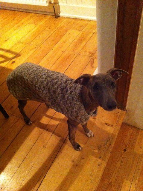 Ravelry: Dog Coat pattern free | vestiti cane | Pinterest | Stricken ...