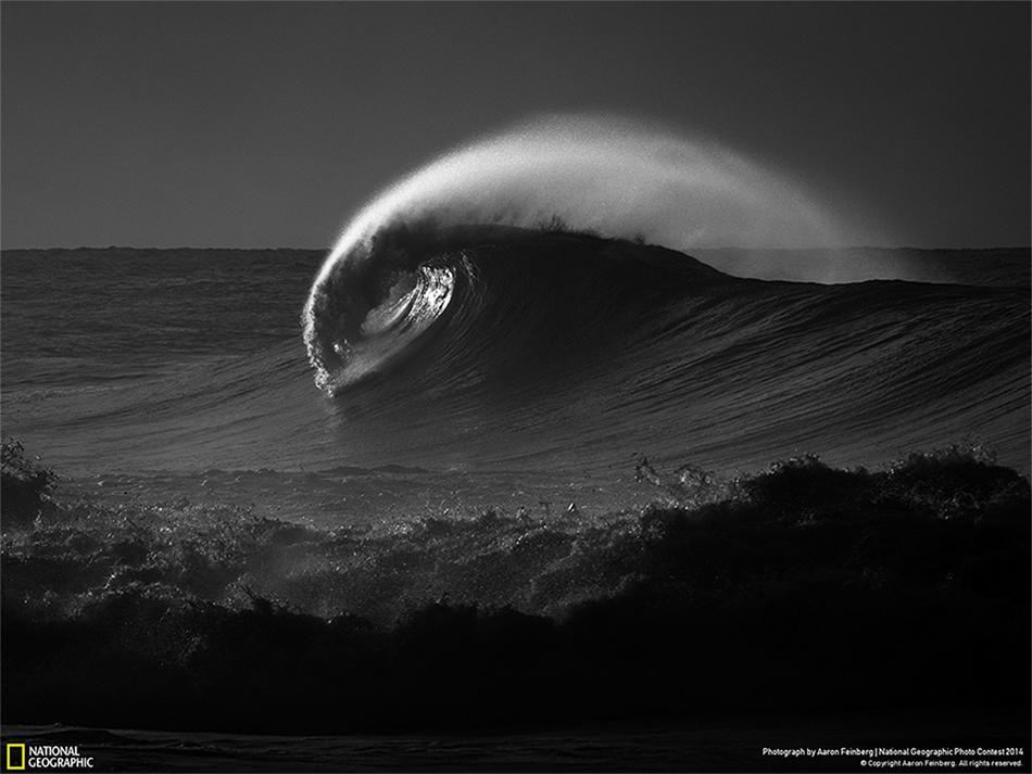 Emozioni in bianco e nero nelle grandi foto della settimana