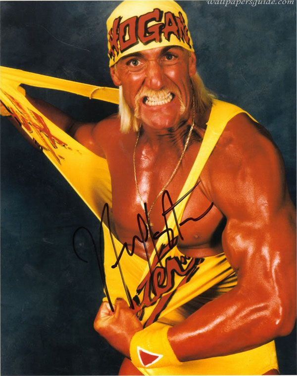Hulk Hogan Costumes Hulk Hogan Costume Ideas Costumei Wwe