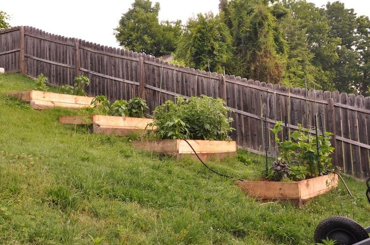 Raised Beds On A Slope | Raised Garden Bed On Hill. Donu0027t Like