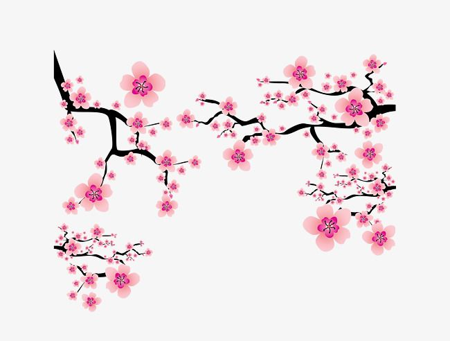 Japanese Elements Cherry Blossoms Branch Dress Up Pink Vector