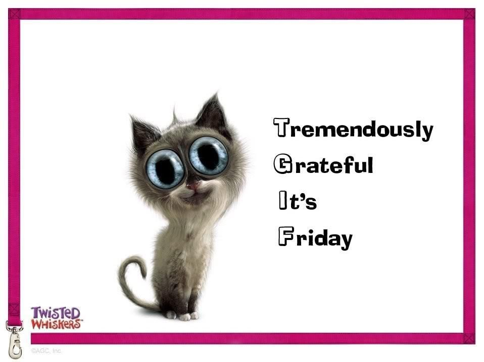 TGIF - Tremendously Grateful its friday | Friday funny ...