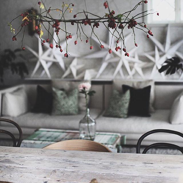 Nytt på bloggen!  #newblogpost link in bio. my wreath of rose hips ... Hur jag gjorde min tunna krans av nypon efter inspiration från mitt senaste besök hos @zetastradgard. Nu hänger den här över mitt matbord.  @skonahem #skönahem #anaturalmidwinter #åsamyrberg