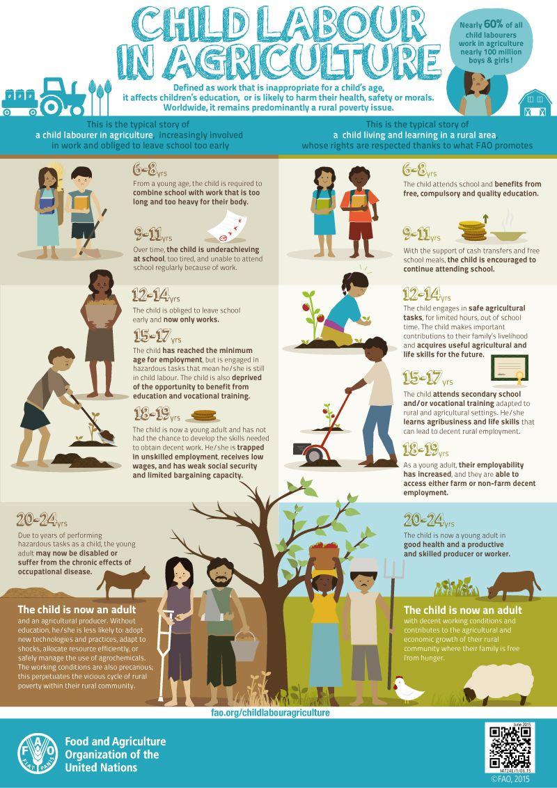 Child Labour in Agriculture Child Labour in Agriculture