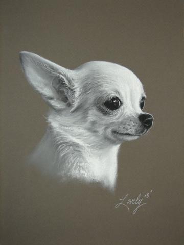 Custom Pet Portrait 11 X 14 Fine Art B W Soft Pastel Drawing