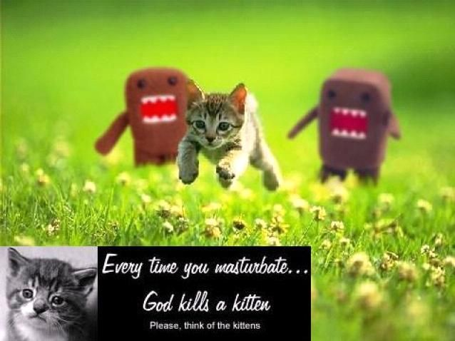 Every time you masturbate a kitten kills a