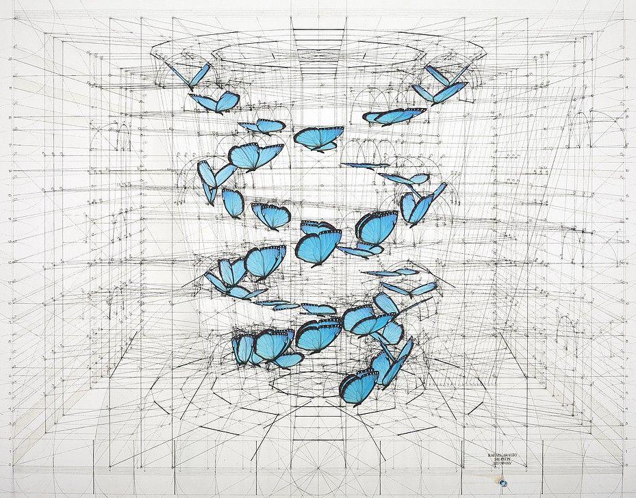 Venezuelan artist Rafael Araujo | Calculation