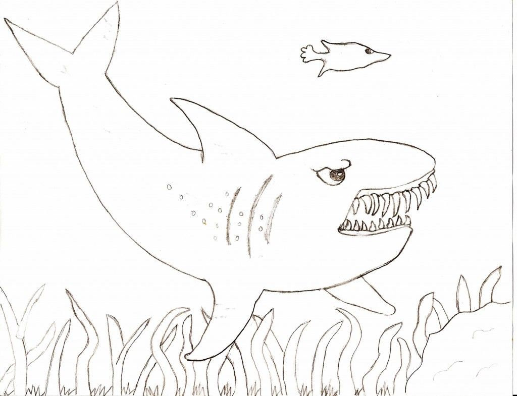 Free Printable Shark Coloring Pages For Kids Shark Coloring Pages Animal Coloring Pages Monster Coloring Pages