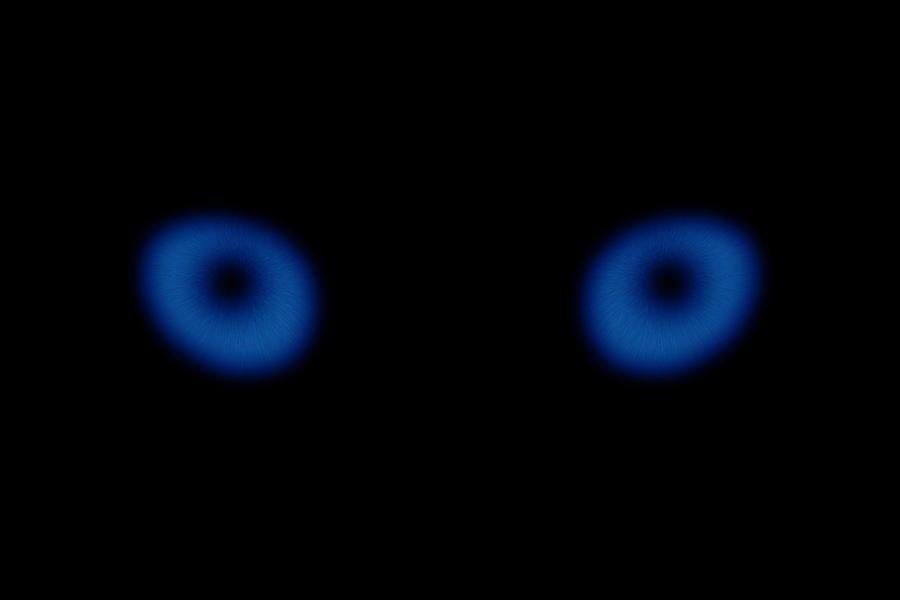 Blue Eyes By Pelo Blanco Photo Light Blue Eyes Blue Eyes Photo