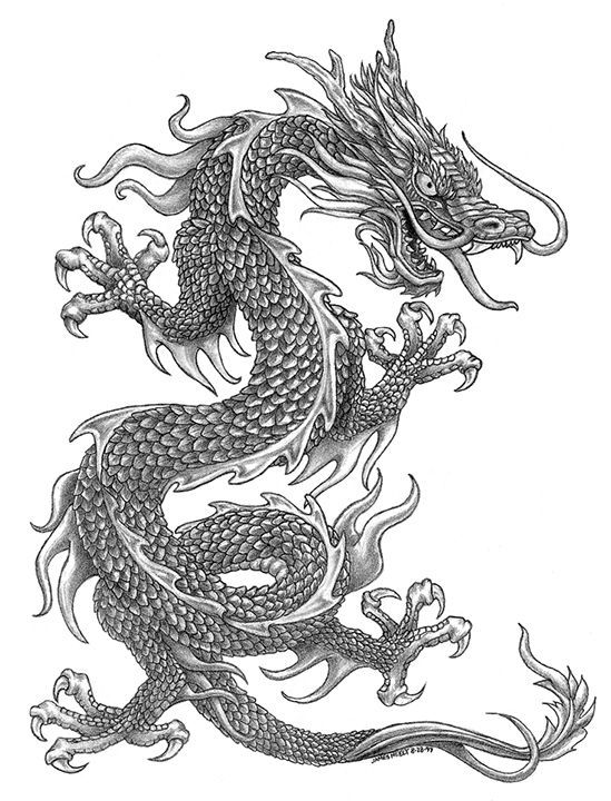 James Neely Dragon Sleeve Tattoos Dragon Pictures Japanese Dragon Tattoos