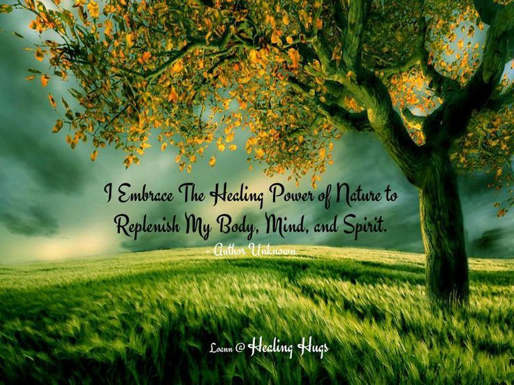 I Embrace The Healing Power Of Nature To Replenish My Body Mind And