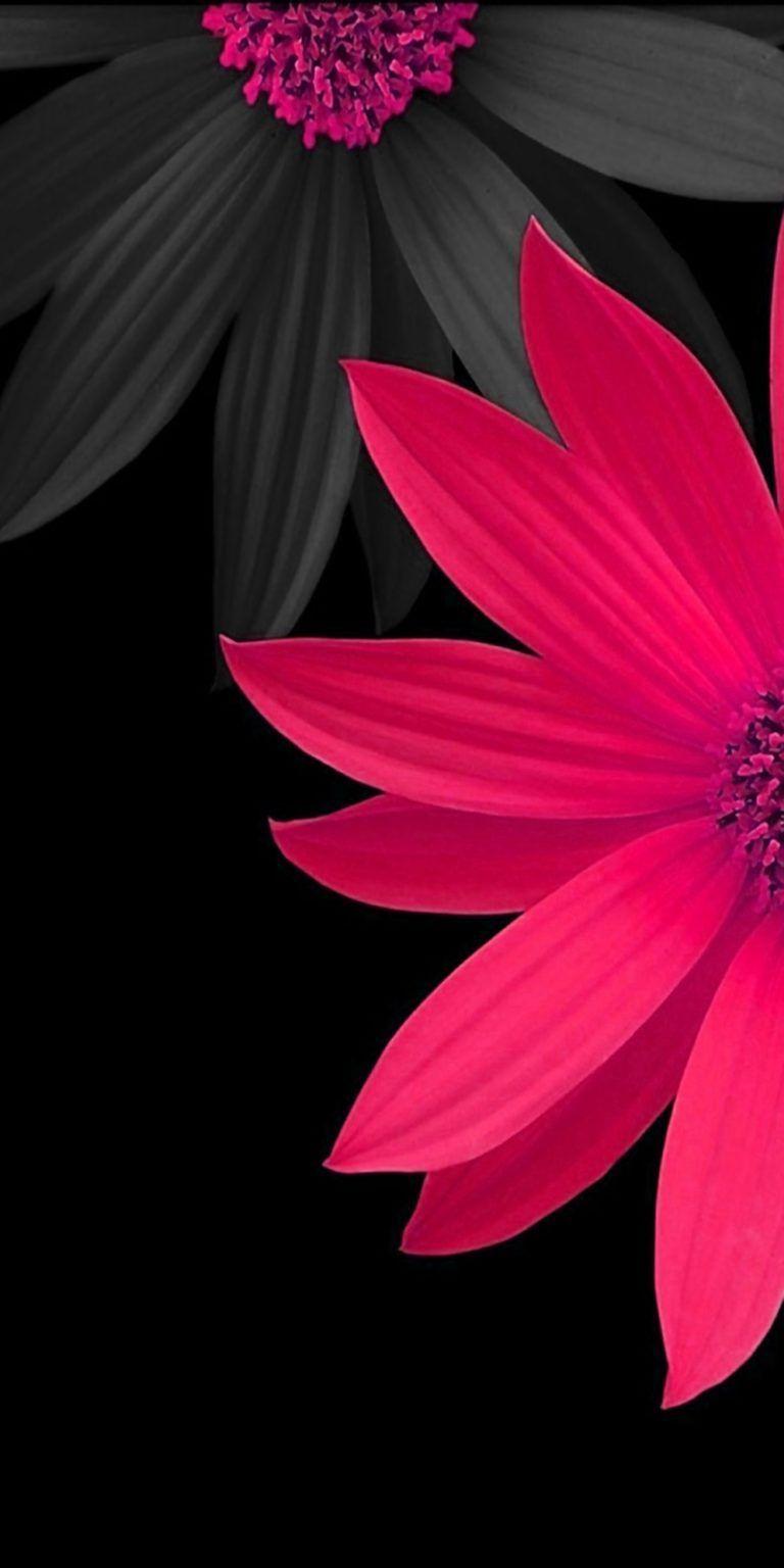 1080p Blue Flowers Wallpaper Hd In 2020 Pink Flowers Wallpaper Watercolor Wallpaper Iphone Flower Background Iphone 1080p iphone flower wallpaper hd