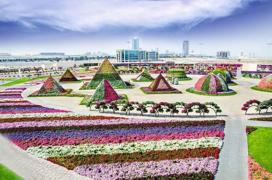 The Dubai Miracle Garden – Fubiz Media