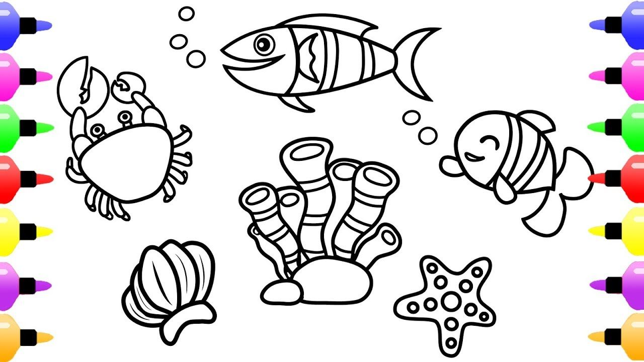 Ocean Animals Coloring Pages for Kids and Cute Coloring